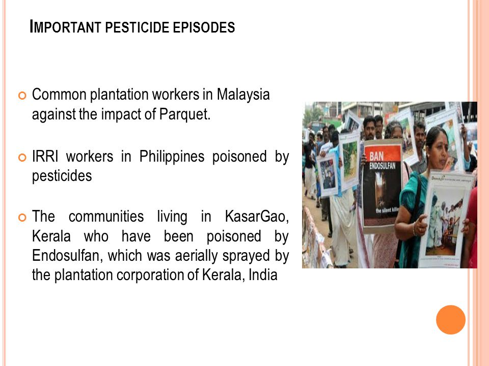I MPORTANT PESTICIDE EPISODES Common plantation workers in Malaysia against the impact of Parquet. IRRI workers in Philippines poisoned by pesticides