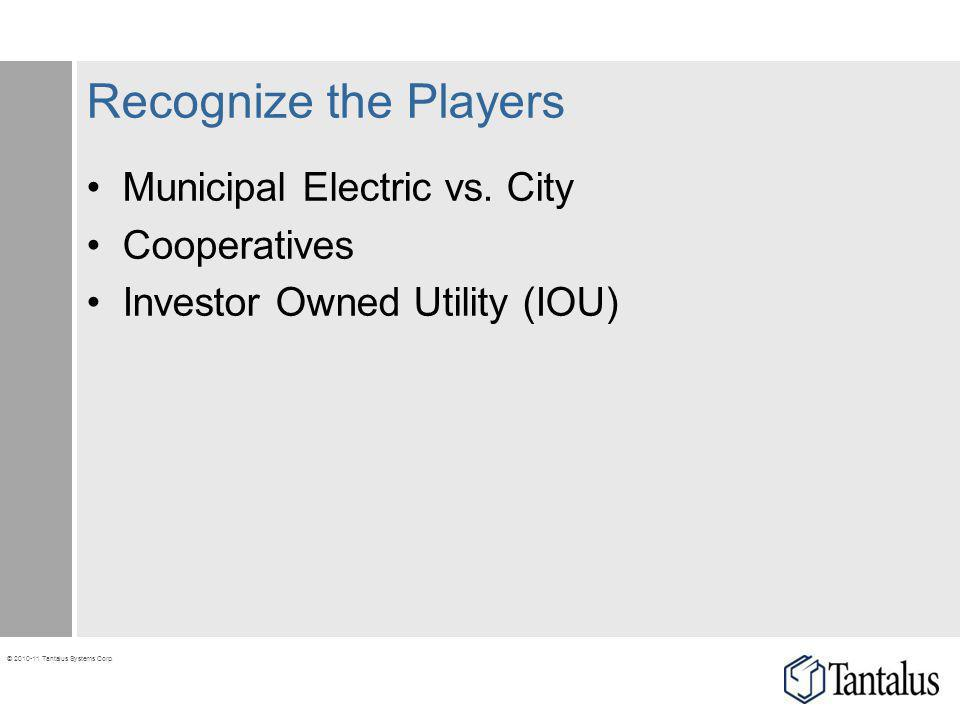 © 2010-11 Tantalus Systems Corp. Recognize the Players Municipal Electric vs. City Cooperatives Investor Owned Utility (IOU)