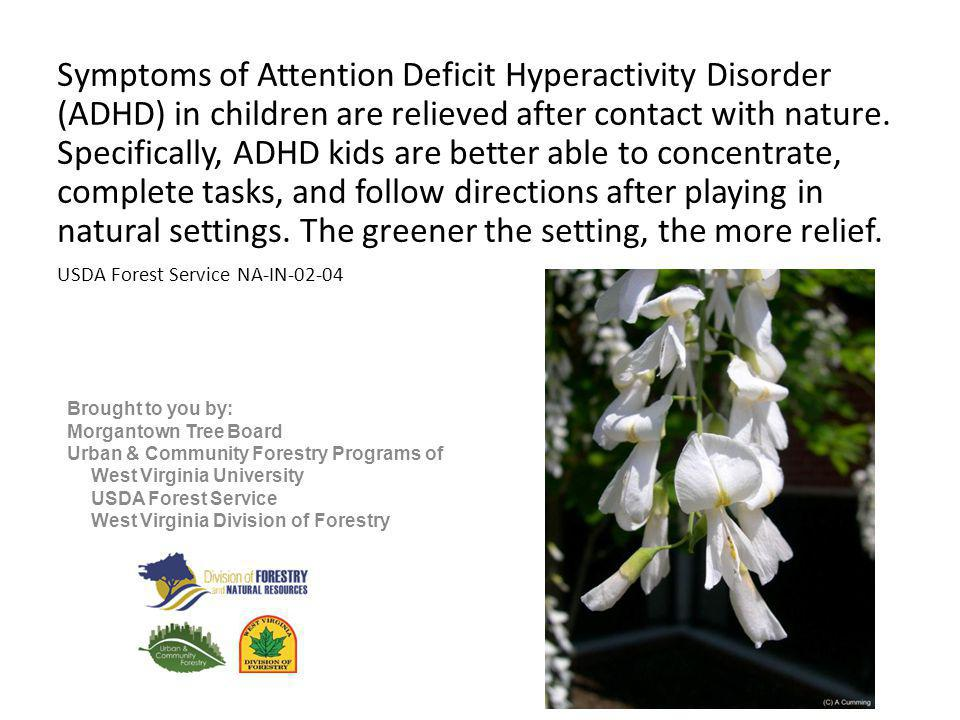 Symptoms of Attention Deficit Hyperactivity Disorder (ADHD) in children are relieved after contact with nature.