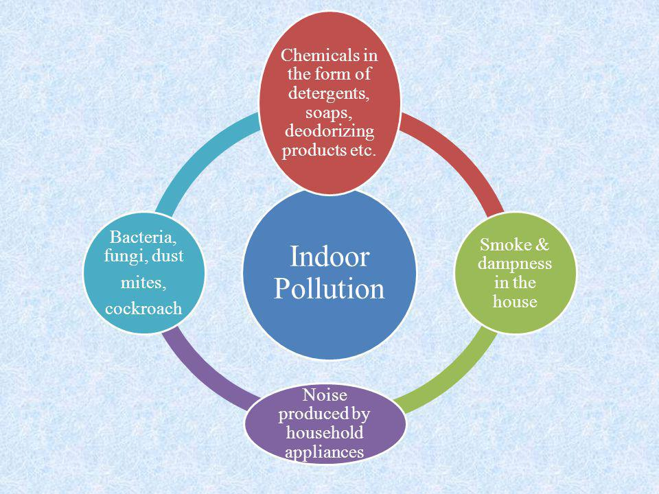 Indoor Pollution Chemicals in the form of detergents, soaps, deodorizing products etc. Smoke & dampness in the house Noise produced by household appli