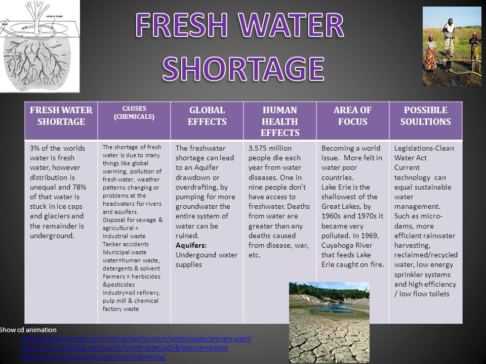 FRESH WATER SHORTAGE CAUSES (CHEMICALS) GLOBAL EFFECTS HUMAN HEALTH EFFECTS AREA OF FOCUS POSSIBLE SOULTIONS 3% of the worlds water is fresh water, ho