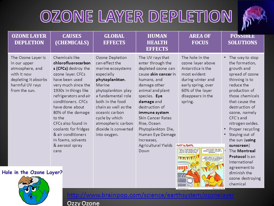 OZONE LAYER DEPLETION CAUSES (CHEMICALS) GLOBAL EFFECTS HUMAN HEALTH EFFECTS AREA OF FOCUS POSSIBLE SOLUTIONS The Ozone Layer is in our upper atmosphe