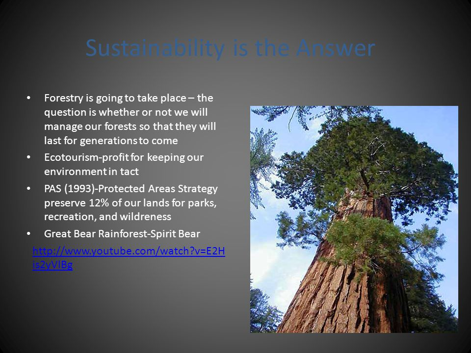 Sustainability is the Answer Forestry is going to take place – the question is whether or not we will manage our forests so that they will last for ge