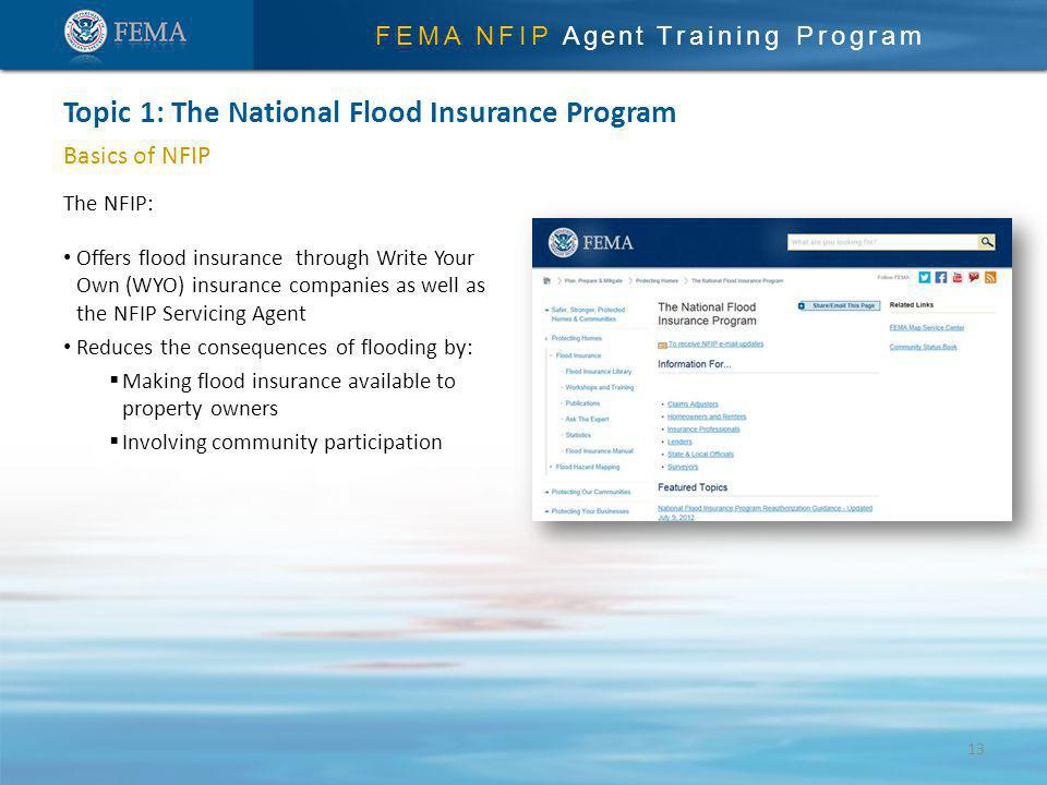 FEMA NFIP Agent Training Program Basics of NFIP The NFIP: Offers flood insurance through Write Your Own (WYO) insurance companies as well as the NFIP Servicing Agent Reduces the consequences of flooding by: Making flood insurance available to property owners Involving community participation Topic 1: The National Flood Insurance Program 13
