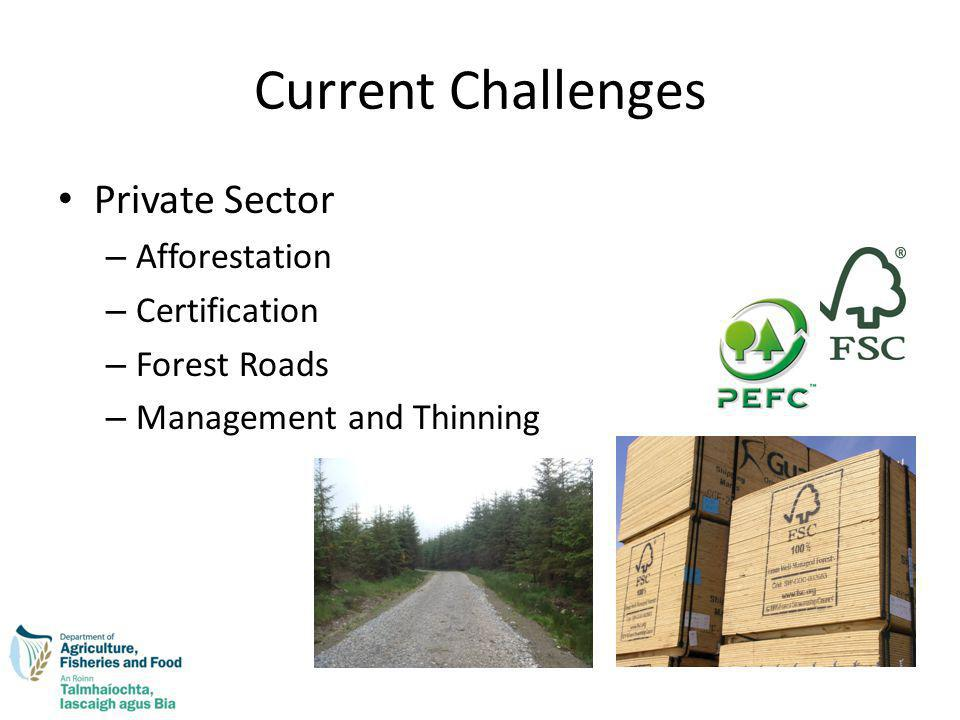 Current Challenges Private Sector – Afforestation – Certification – Forest Roads – Management and Thinning