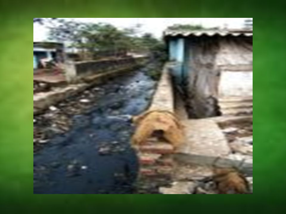 EFFECT OF WATER POLLUTION:- EFFECT OF WATER POLLUTION ON HUMAN HEALTH EFFECT OF WATER POLLUTION ON HUMAN HEALTH EFFECT OF WATER POLLUTION ON PLANTS AND ANIMALS EFFECT OF WATER POLLUTION ON PLANTS AND ANIMALS