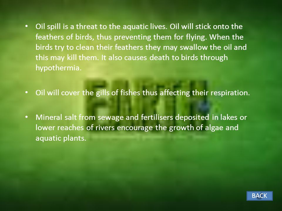 EFFECT OF WATER POLLUTION ON PLANTS AND ANIMALS Rubbish and oil floating on the surface of the water reduces the penetration of light and diffusion of