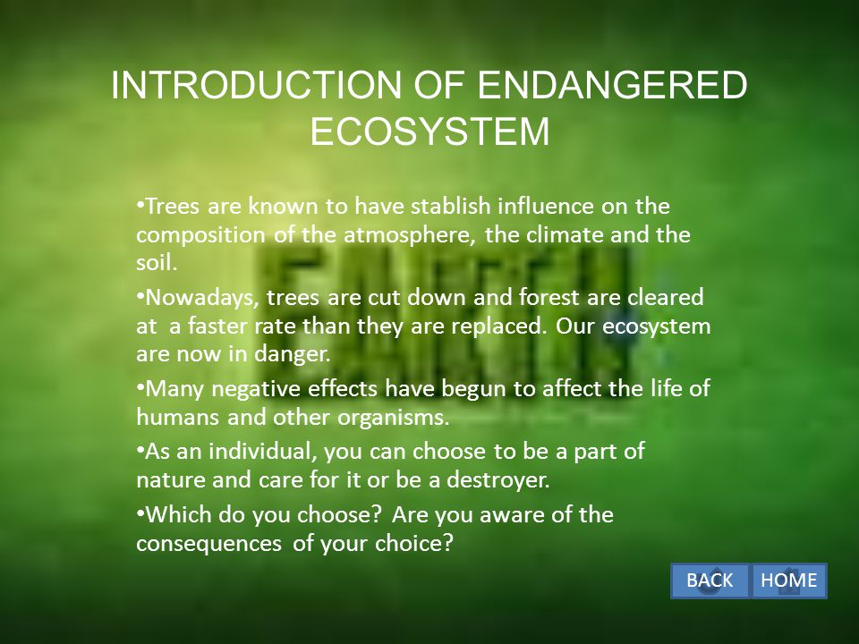 ENDANGERED ECOSYSTEM INTRODUCTION OF ENDANGERED ECOSYSTEM HUMAN ACTIVITIES THAT ENDANGERED AN ECOSYSTEM HUMAN ACTIVITIES THAT ENDANGERED AN ECOSYSTEM IMPACT OF HUMAN ACTIVITIES ON THE ECOSYSTEM IMPACT OF HUMAN ACTIVITIES ON THE ECOSYSTEM EFFECT OF UNPLANNED DEVELOPMENT AND MISMANAGEMENT OF THE ECOSYSTEM EFFECT OF UNPLANNED DEVELOPMENT AND MISMANAGEMENT OF THE ECOSYSTEM