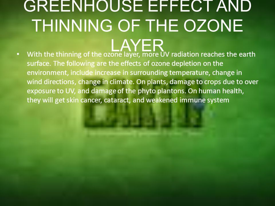 GREENHOUSE EFFECT AND THINNING OF THE OZONE LAYER This effect is similar to a greenhouse used in farming, it is usually found in temperature countries, whereby the glass of the greenhouse traps the heat of the sun to keep the soil and air warm The phenomena of over warming of the earth air known as a greenhouse effect.