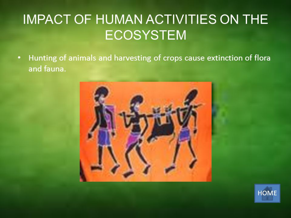 At present, humans have the population size, technology and cultural inclination to alter the ecosystem.