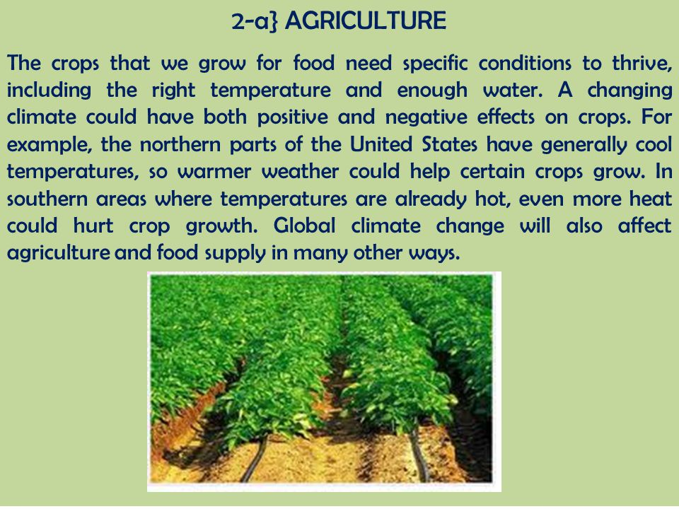 2-a} AGRICULTURE The crops that we grow for food need specific conditions to thrive, including the right temperature and enough water. A changing clim