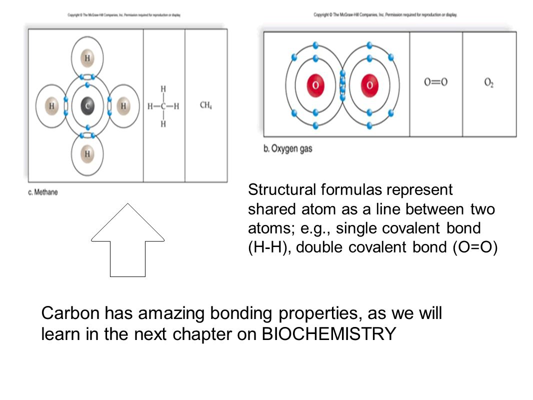 C. Covalent Bonding Hydrogen can give up an electron to become a hydrogen ion (H+) or share an electron with another atom to complete its outer shell