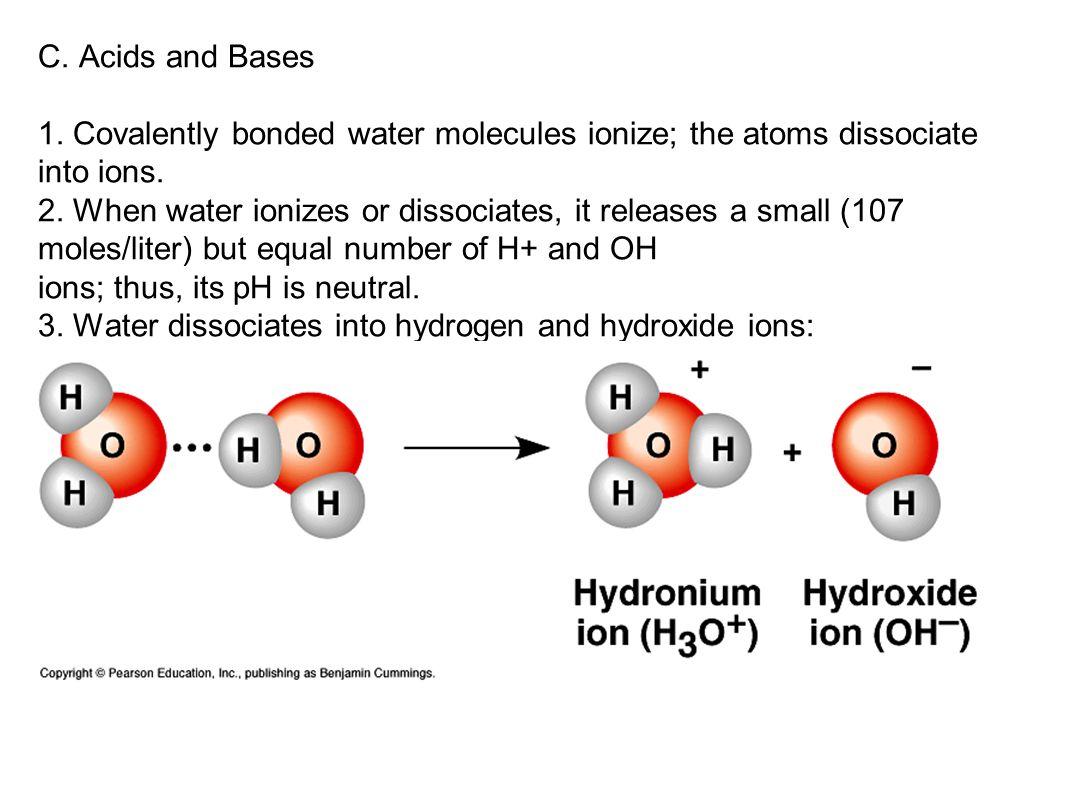 AP Biology B ICARBONATE B UFFER S YSTEM : H 2 O + CO 2 H 2 CO 3 HCO 3 - + H + HCO 3 - = Bicarbonate (weak base) H 2 CO 3 = Carbonic acid (weak acid) M