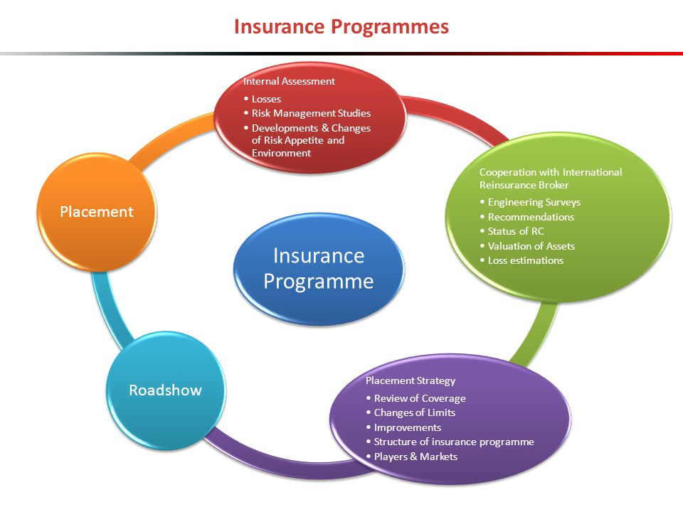 Insurance Programmes Insurance Programme Internal Assessment Losses Risk Management Studies Developments & Changes of Risk Appetite and Environment Co