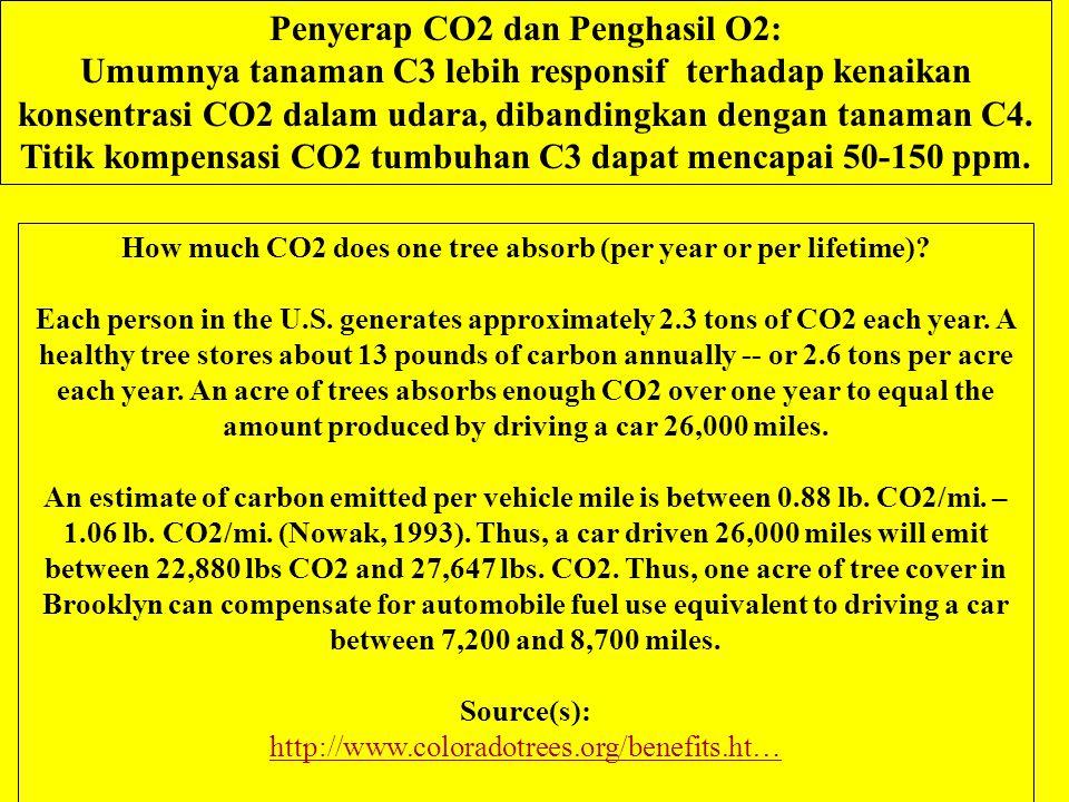Penyerap CO2 dan Penghasil O2: Umumnya tanaman C3 lebih responsif terhadap kenaikan konsentrasi CO2 dalam udara, dibandingkan dengan tanaman C4.
