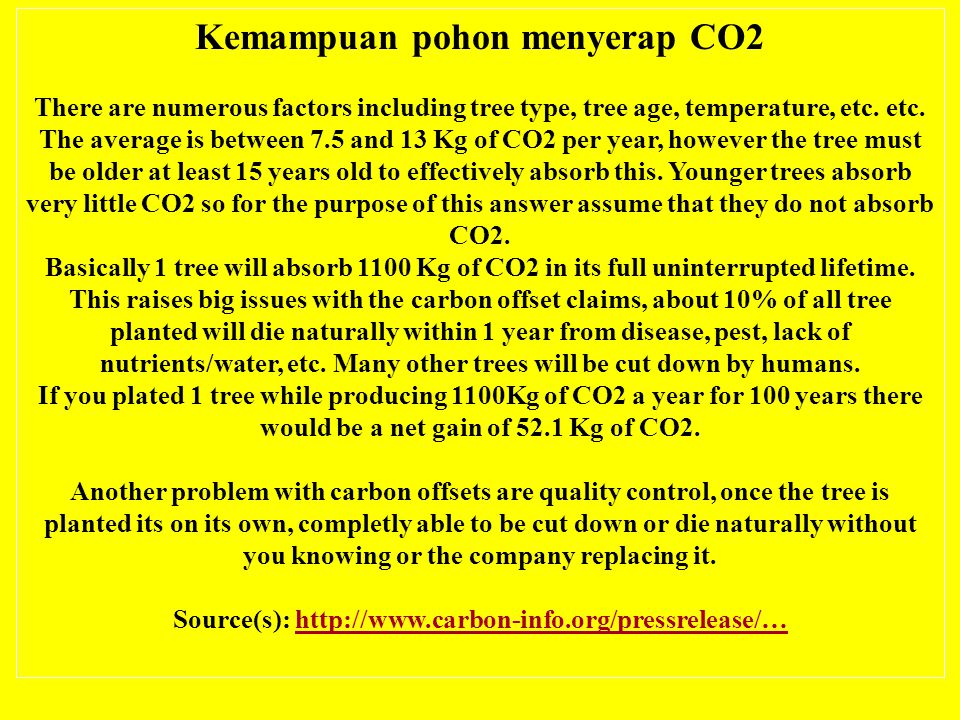Kemampuan pohon menyerap CO2 There are numerous factors including tree type, tree age, temperature, etc.