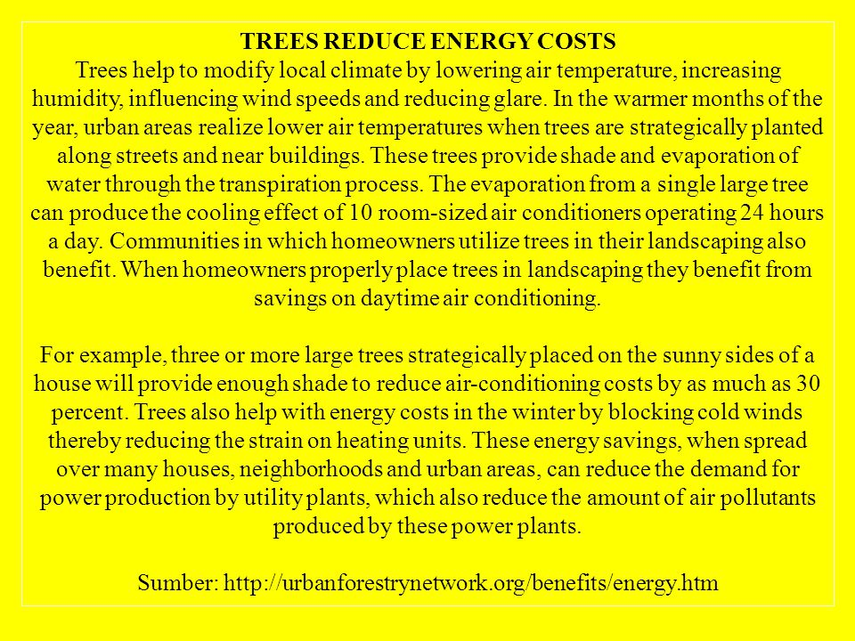 TREES REDUCE ENERGY COSTS Trees help to modify local climate by lowering air temperature, increasing humidity, influencing wind speeds and reducing glare.