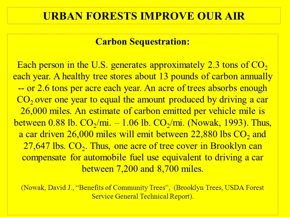 Carbon Sequestration: Each person in the U.S. generates approximately 2.3 tons of CO 2 each year.