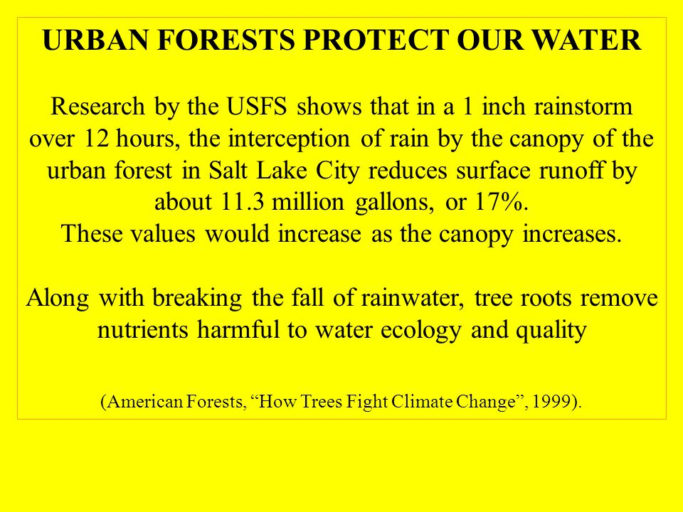 URBAN FORESTS PROTECT OUR WATER Research by the USFS shows that in a 1 inch rainstorm over 12 hours, the interception of rain by the canopy of the urban forest in Salt Lake City reduces surface runoff by about 11.3 million gallons, or 17%.