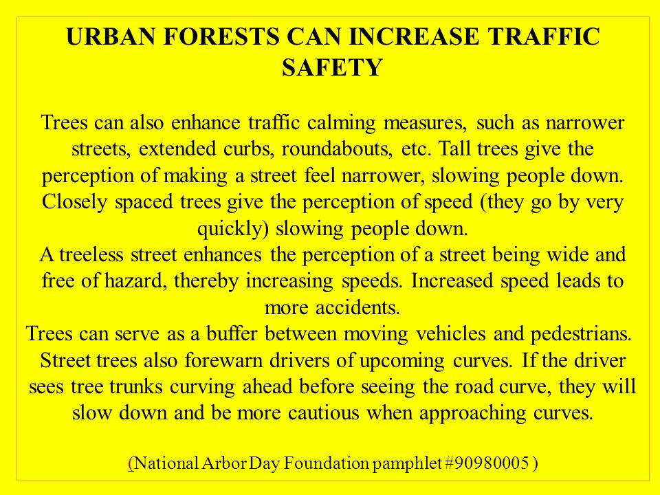 URBAN FORESTS CAN INCREASE TRAFFIC SAFETY Trees can also enhance traffic calming measures, such as narrower streets, extended curbs, roundabouts, etc.