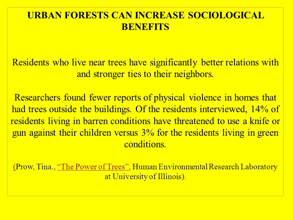 URBAN FORESTS CAN INCREASE SOCIOLOGICAL BENEFITS Residents who live near trees have significantly better relations with and stronger ties to their neighbors.
