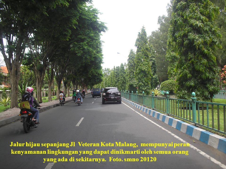 Jalur hijau sepanjang Jl Veteran Kota Malang, mempunyai peran kenyamanan lingkungan yang dapat dinikmarti oleh semua orang yang ada di sekitarnya.