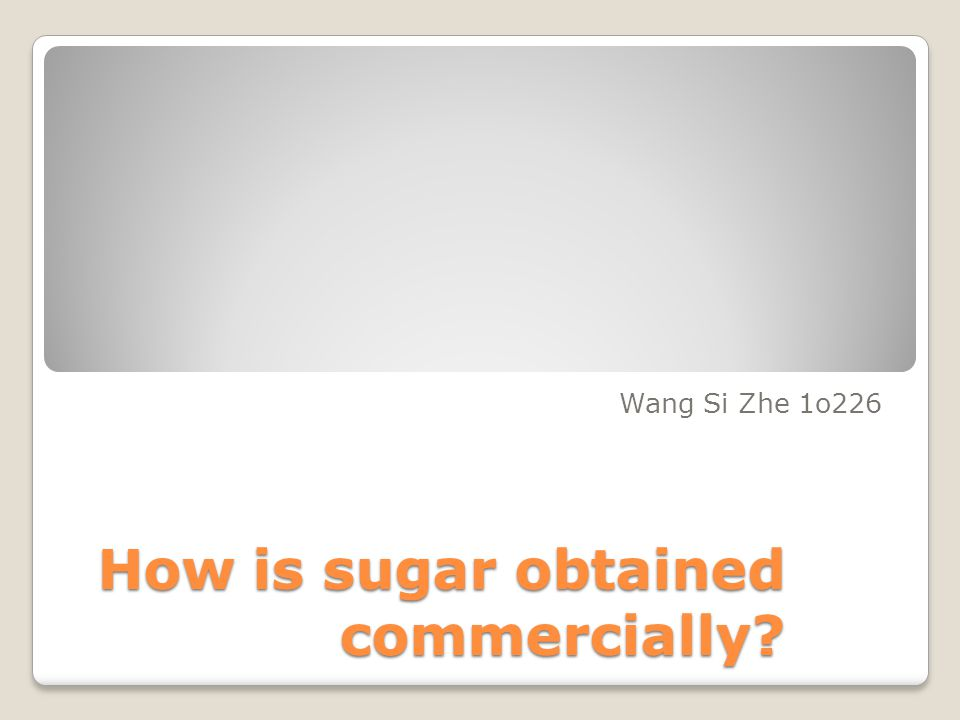 How is sugar obtained commercially? Wang Si Zhe 1o226