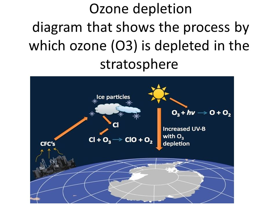 Ozone depletion diagram that shows the process by which ozone (O3) is depleted in the stratosphere