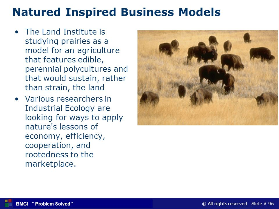 © All rights reserved Slide # 96 BMGI * Problem Solved * Natured Inspired Business Models The Land Institute is studying prairies as a model for an ag