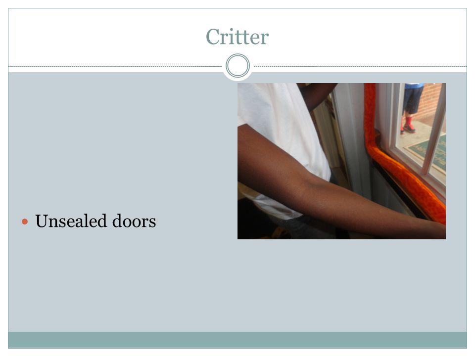 Critter Unsealed doors