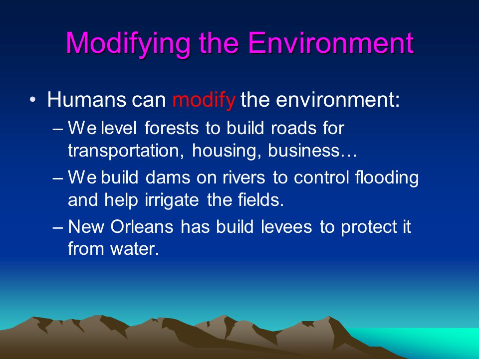 Modifying the Environment Humans can modify the environment: –We level forests to build roads for transportation, housing, business… –We build dams on