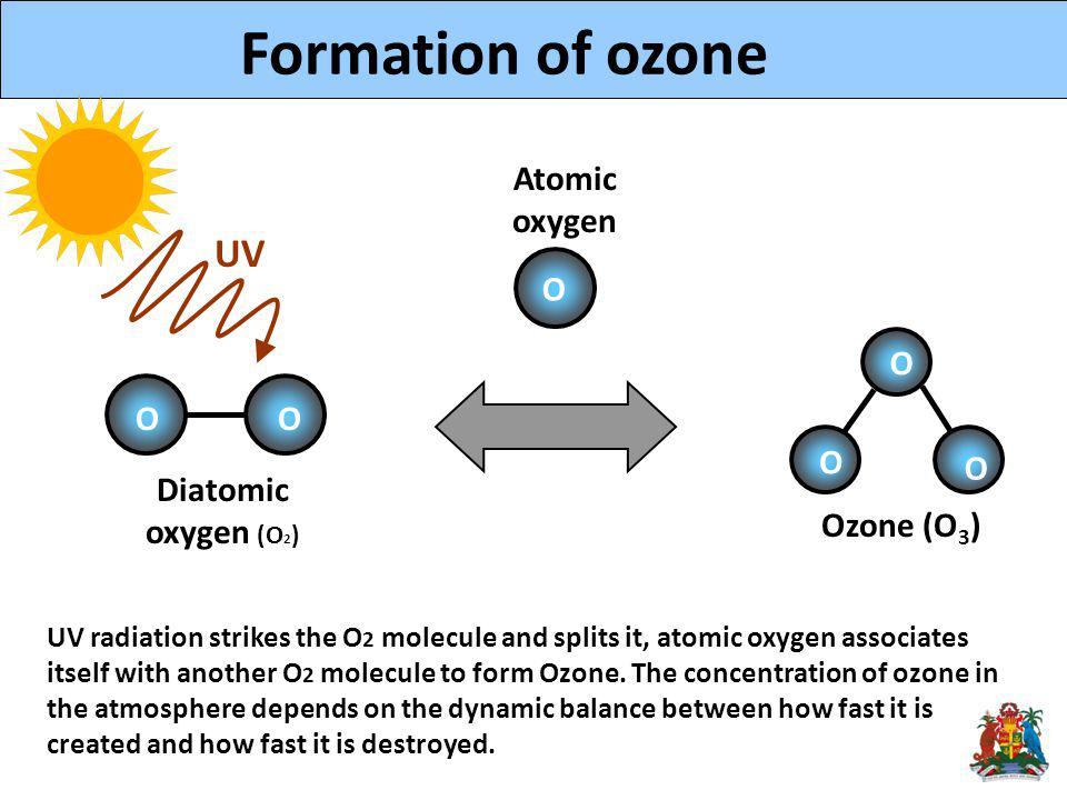 Ozone (O 3 ) UV O O OO O O O Diatomic oxygen (O 2 ) UV radiation strikes the O 2 molecule and splits it, atomic oxygen associates itself with another O 2 molecule to form Ozone.