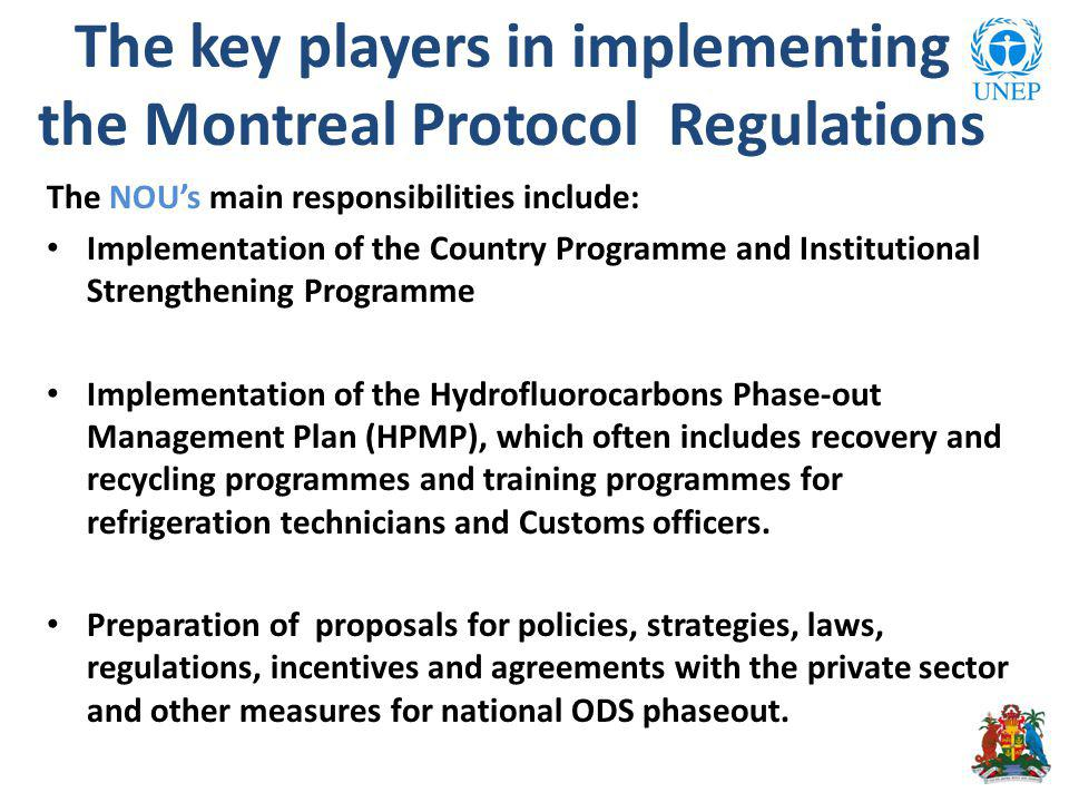 The NOUs main responsibilities include: Implementation of the Country Programme and Institutional Strengthening Programme Implementation of the Hydrofluorocarbons Phase-out Management Plan (HPMP), which often includes recovery and recycling programmes and training programmes for refrigeration technicians and Customs officers.