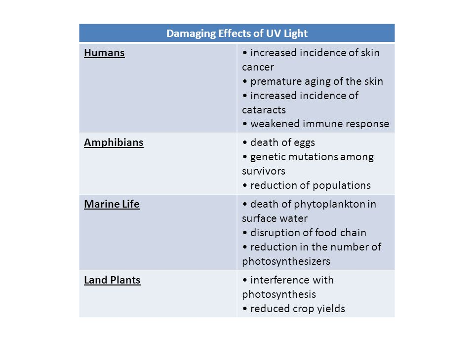 Damaging Effects of UV Light Humans increased incidence of skin cancer premature aging of the skin increased incidence of cataracts weakened immune re