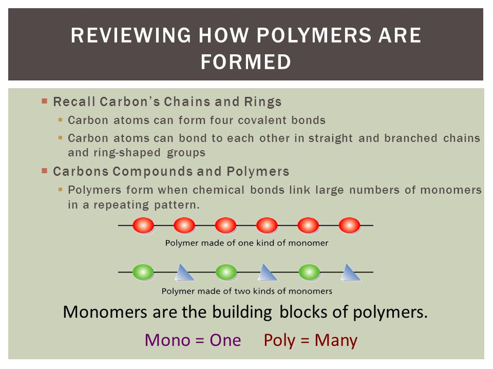REVIEWING HOW POLYMERS ARE FORMED Recall Carbons Chains and Rings Carbon atoms can form four covalent bonds Carbon atoms can bond to each other in str