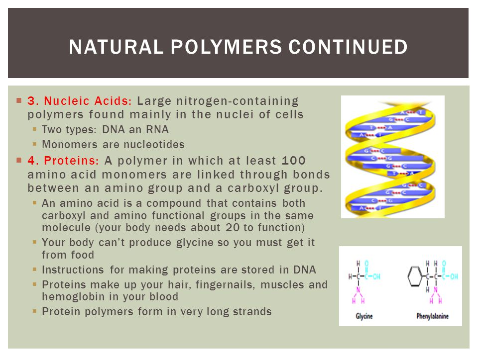 3. Nucleic Acids: Large nitrogen-containing polymers found mainly in the nuclei of cells Two types: DNA an RNA Monomers are nucleotides 4. Proteins: A