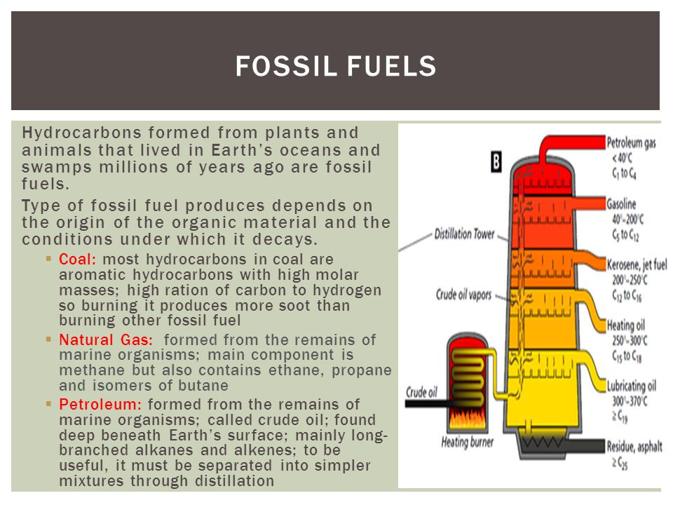 Hydrocarbons formed from plants and animals that lived in Earths oceans and swamps millions of years ago are fossil fuels. Type of fossil fuel produce
