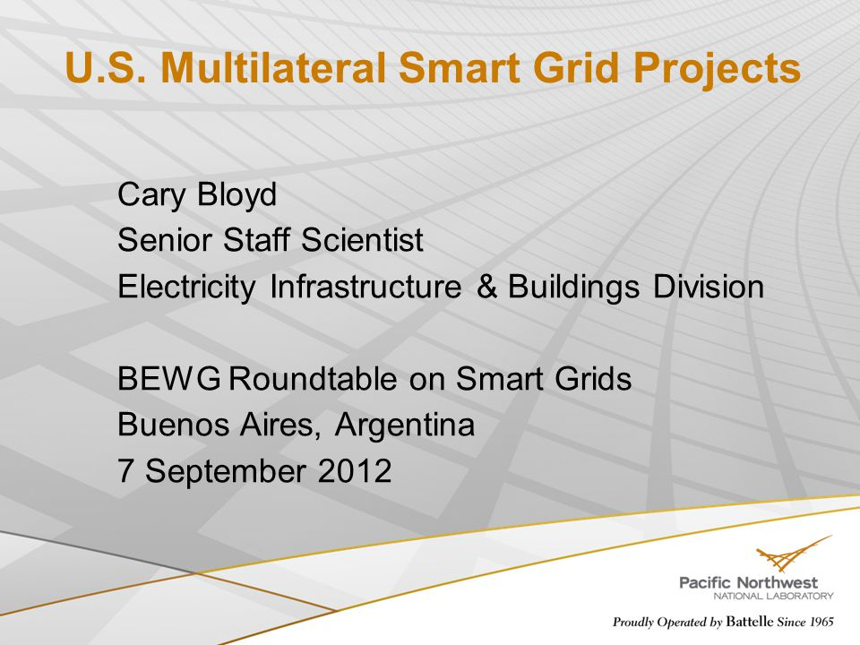 U.S. Multilateral Smart Grid Projects Cary Bloyd Senior Staff Scientist Electricity Infrastructure & Buildings Division BEWG Roundtable on Smart Grids