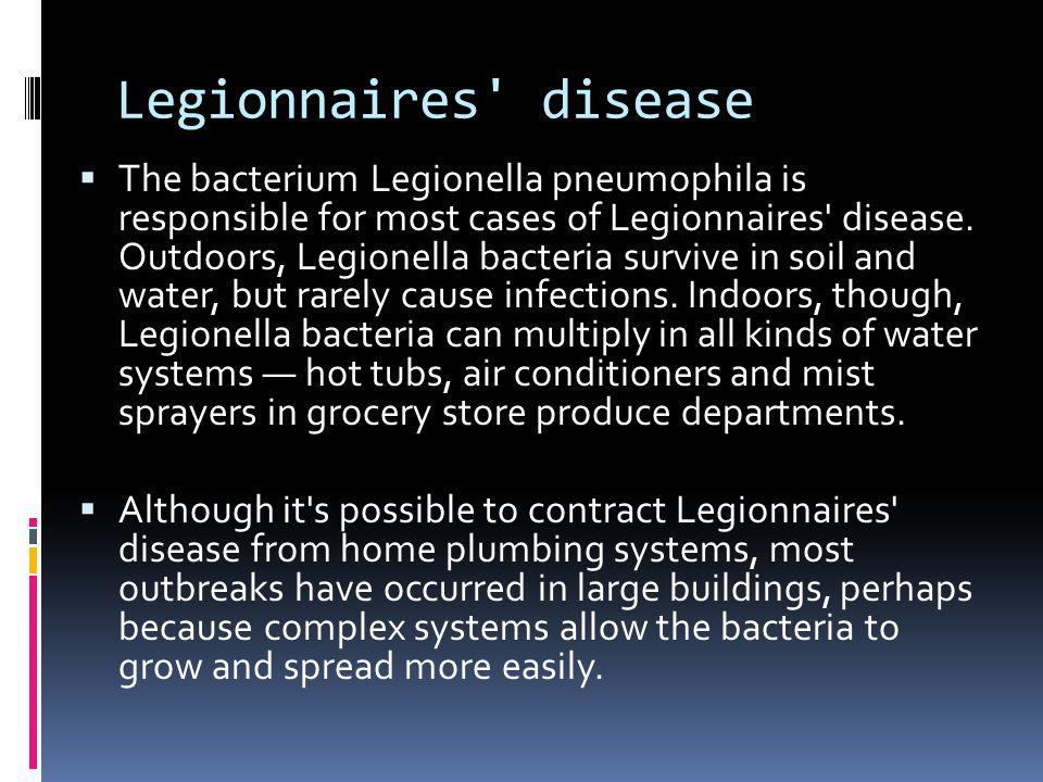 Legionnaires' disease The bacterium Legionella pneumophila is responsible for most cases of Legionnaires' disease. Outdoors, Legionella bacteria survi
