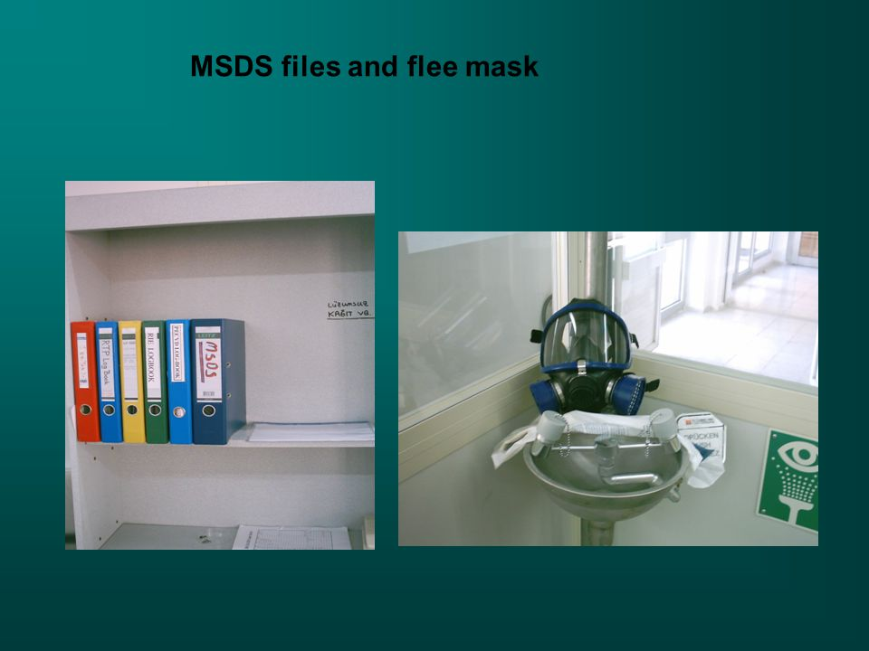 MSDS files and flee mask