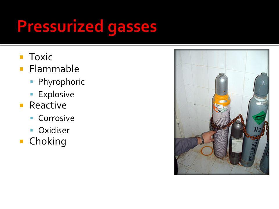 Toxic Flammable Phyrophoric Explosive Reactive Corrosive Oxidiser Choking