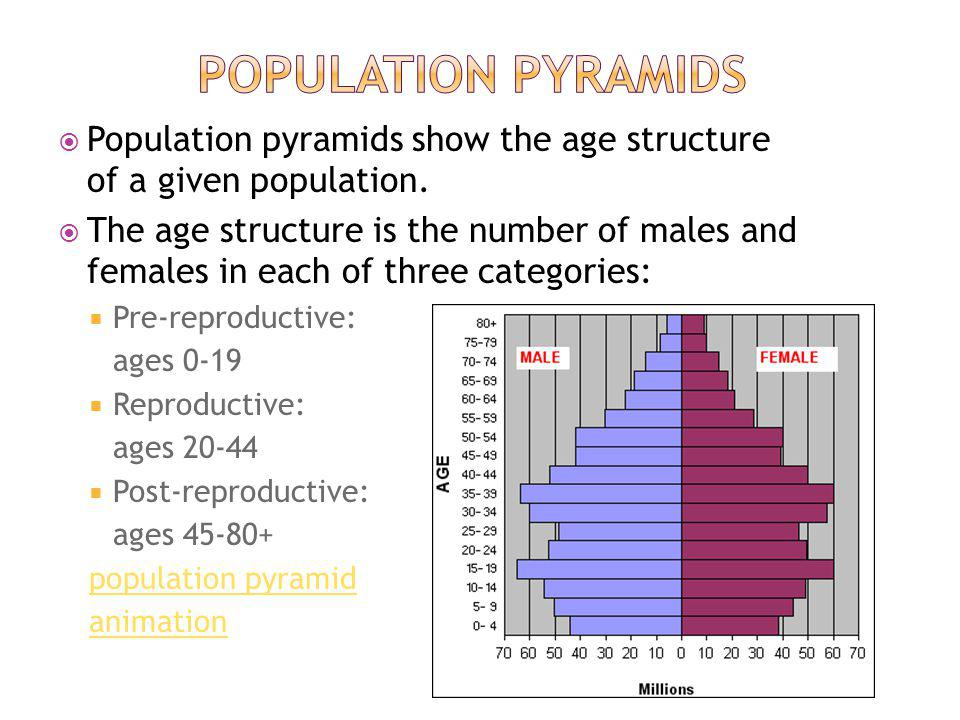 Population pyramids show the age structure of a given population.