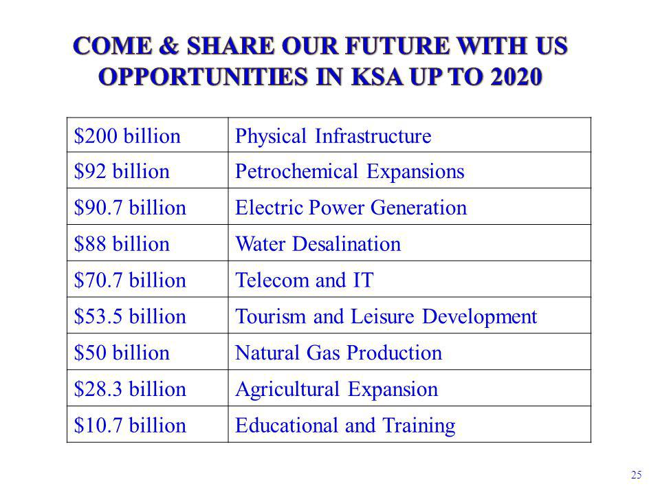 Physical Infrastructure$200 billion Petrochemical Expansions$92 billion Electric Power Generation$90.7 billion Water Desalination$88 billion Telecom a