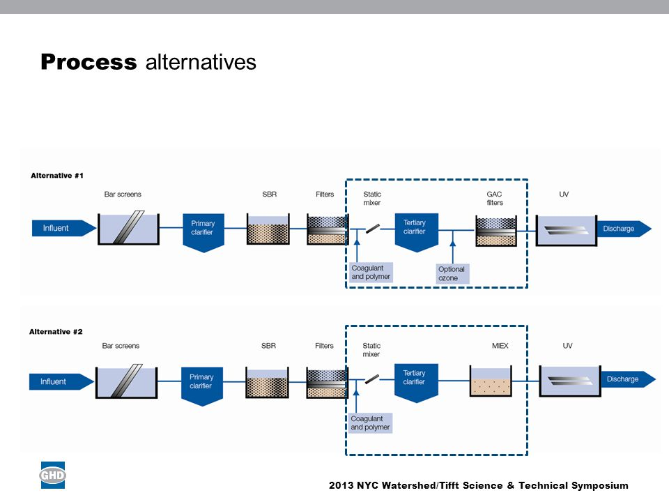 2013 NYC Watershed/Tifft Science & Technical Symposium Process alternatives