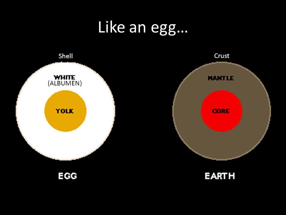 Like an egg… Shell Crust (ALBUMEN)