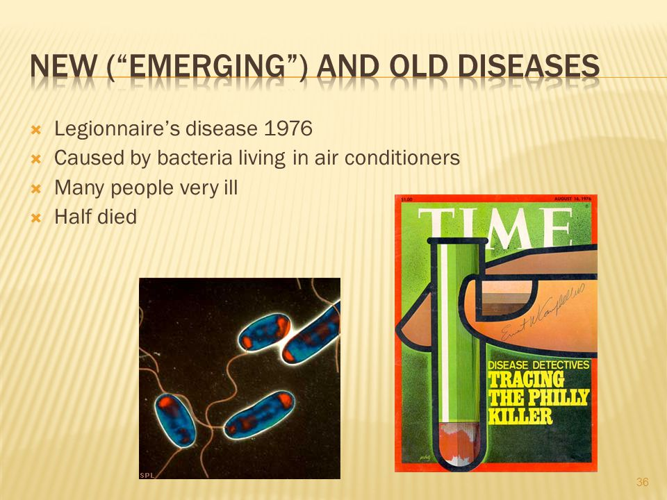 Legionnaires disease 1976 Caused by bacteria living in air conditioners Many people very ill Half died 36