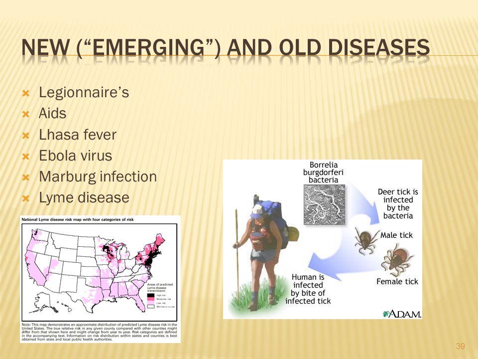 Legionnaires Aids Lhasa fever Ebola virus Marburg infection Lyme disease 39