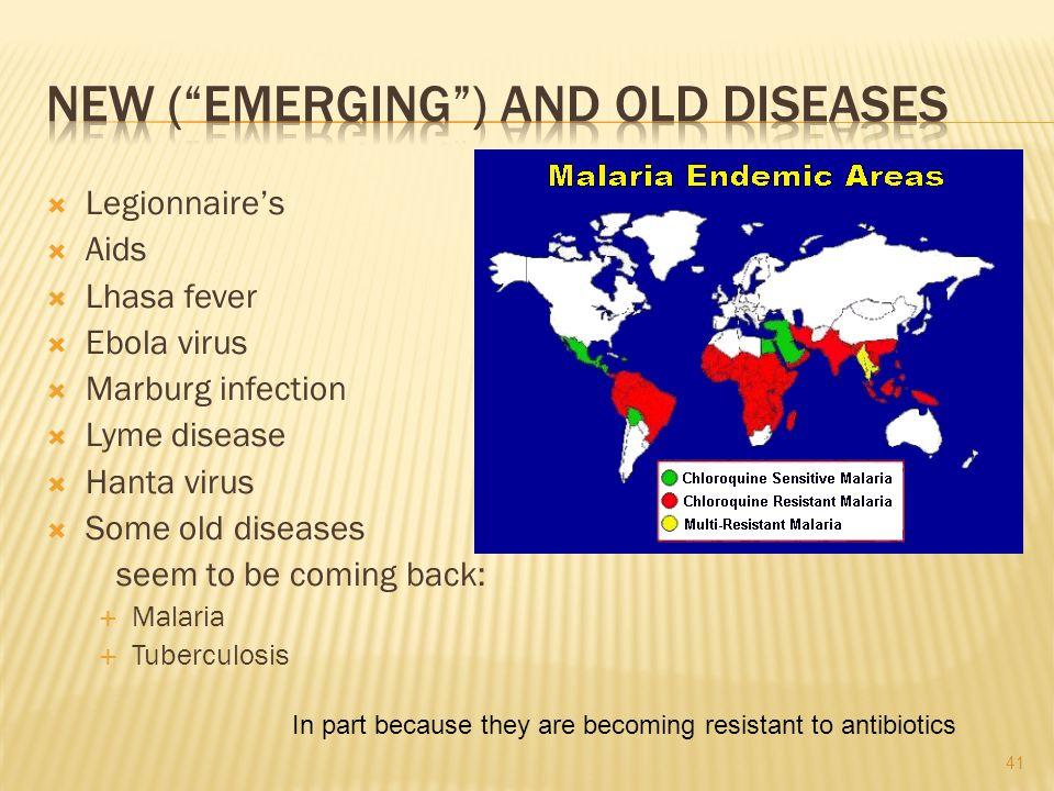 Legionnaires Aids Lhasa fever Ebola virus Marburg infection Lyme disease Hanta virus Some old diseases seem to be coming back: Malaria Tuberculosis In