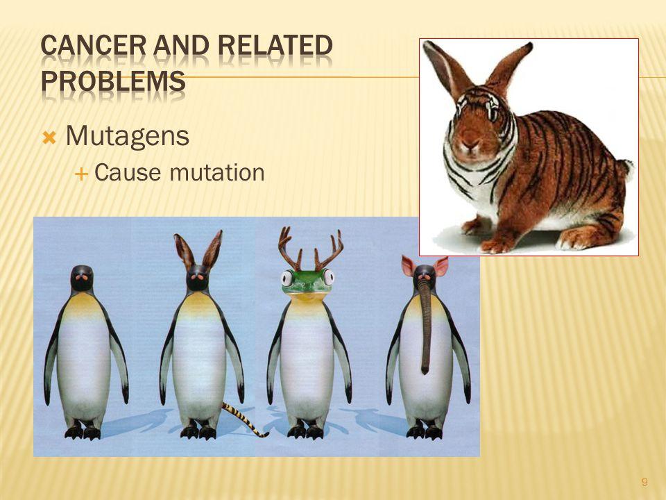 Mutagens Cause mutation 9