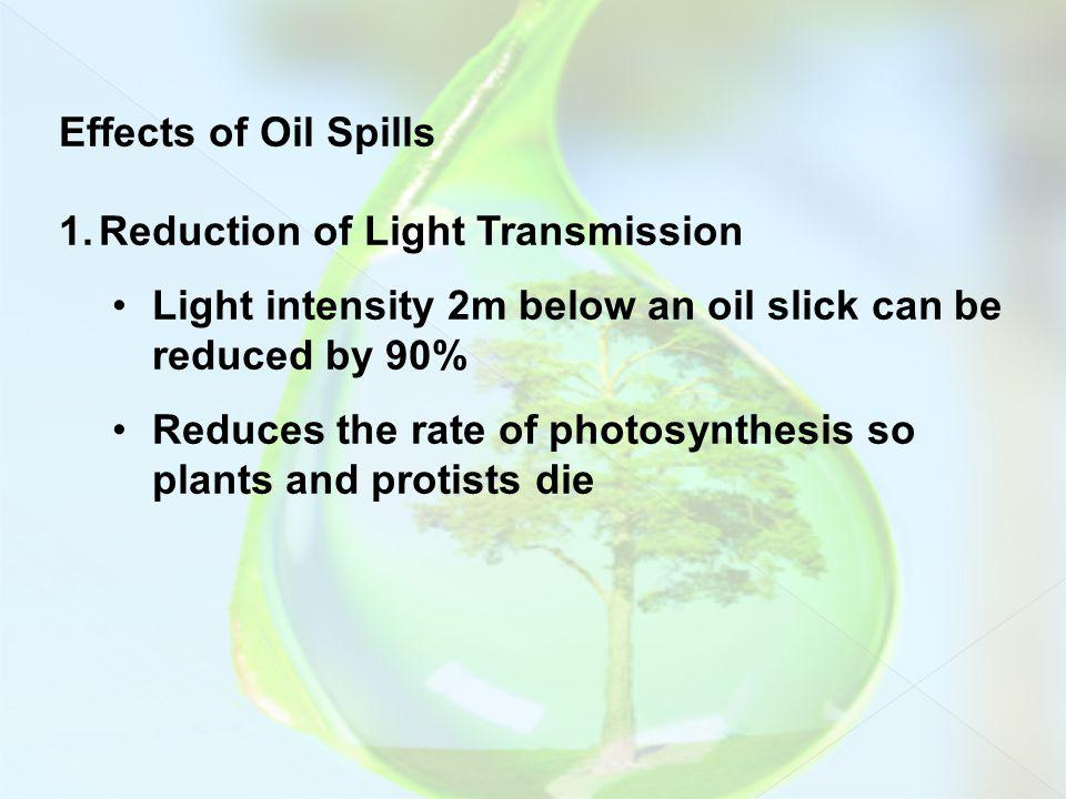 Effects of Oil Spills 1.Reduction of Light Transmission Light intensity 2m below an oil slick can be reduced by 90% Reduces the rate of photosynthesis